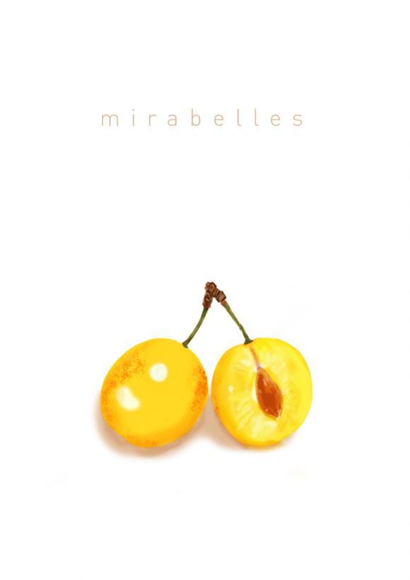 http://kadjaland.cowblog.fr/images/mirabellespetites.jpg